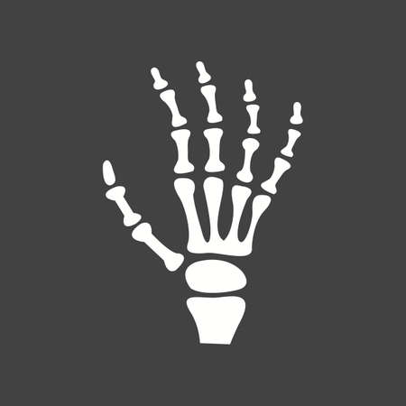 skeleton hand: X-ray, bones, skeletonicon vector image. Can also be used for healthcare and medical. Suitable for web apps, mobile apps and print media.