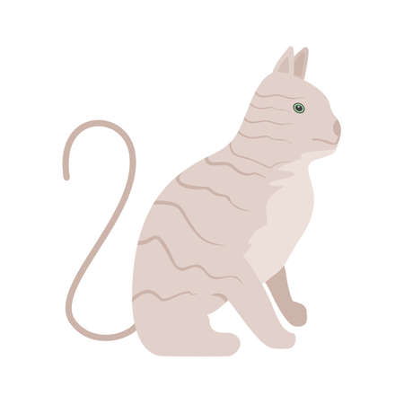 pussy: Wild cat, pussy cat icon vector image. Can also be used for Animals and Insects. Suitable for mobile apps, web apps and print media.