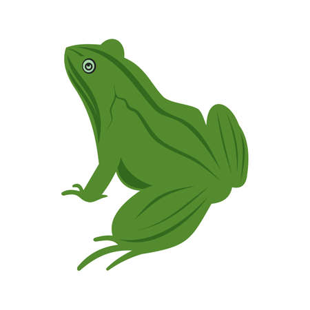 amphibians: Frogs, animal, green icon vector image. Can also be used for Animals and Insects. Suitable for mobile apps, web apps and print media.
