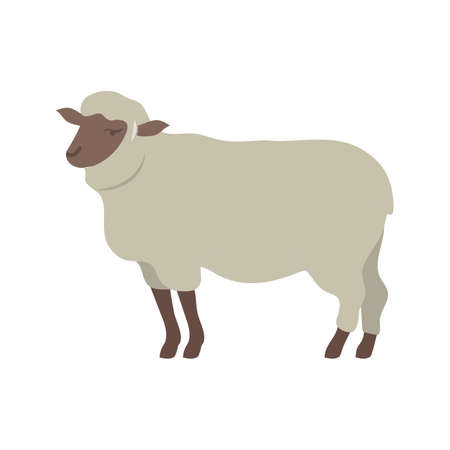 sheep wool: Sheep, animal, farm icon vector image. Can also be used for Animals and Insects. Suitable for mobile apps, web apps and print media.