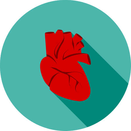 Heart, human organ icon