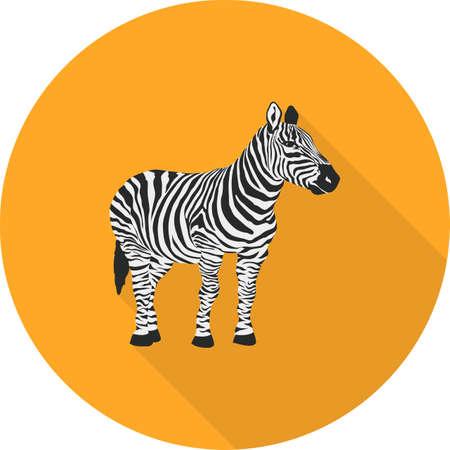Zebra, wild animal icon