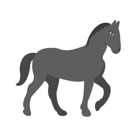 Horse, riding, racing
