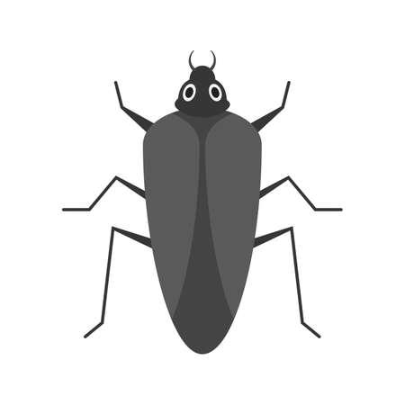 Cockroach, brown, pest