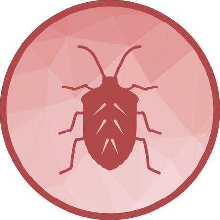 Insect, crawler, beetle 向量圖像