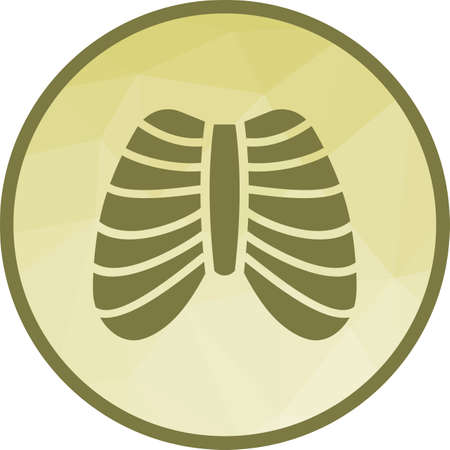 System, ribcage, shape icon vector image. Can also be used for human anatomy. Suitable for mobile apps, web apps and print media. Illustration