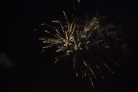 fireworks in the night sky on holiday