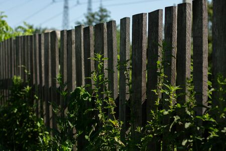 wooden fence in village in summer 版權商用圖片 - 150128378