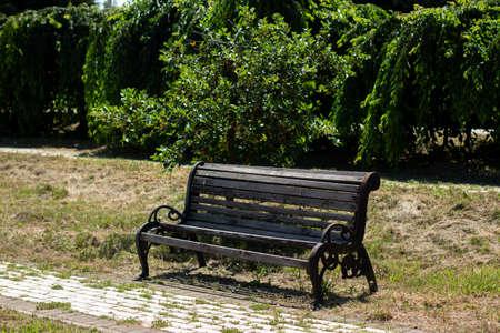 wooden bench in large garden