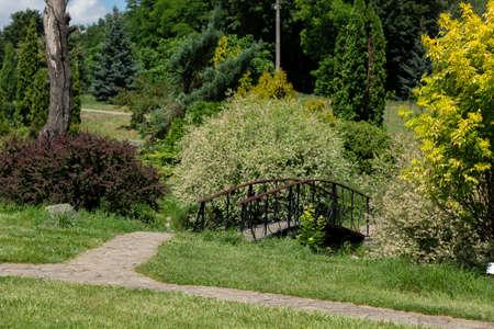 small decorative bridge in park