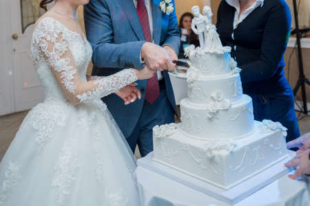 the groom and the bride cut wedding cake