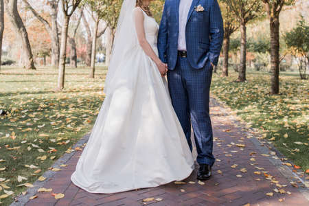 bride and groom on the alley in park
