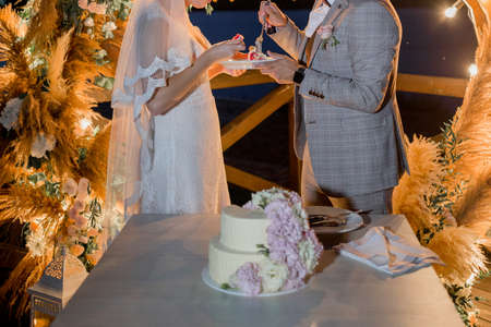 a bride and groom near wedding arch with cake Stockfoto