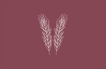 vector wheat spikelet logo background symbol icon Illustration