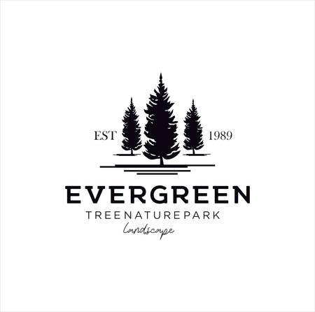 pine evergreen fir Tree Logo Design Template . hemlock spruce Tree Logo Vintage . conifer cedar coniferous Logo Hipster Retro. larch pinus cypress Logo Icon . Illustration