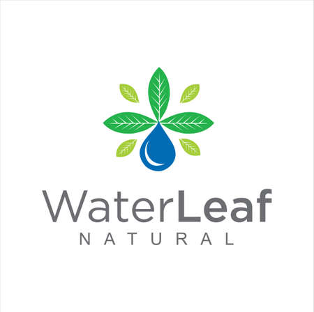 Bio green leaf water drop logo Design Vector Stock. pure Natural Healthy water leaf logo concept 向量圖像