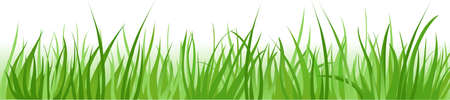 Grass borders background Illustration