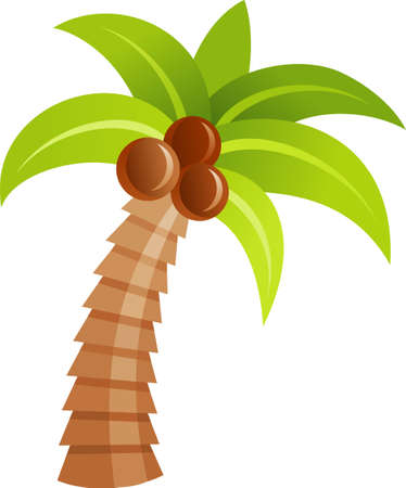 An illustration with a palm