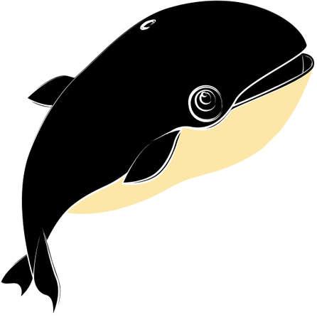 Eine Abbildung mit Killerwal