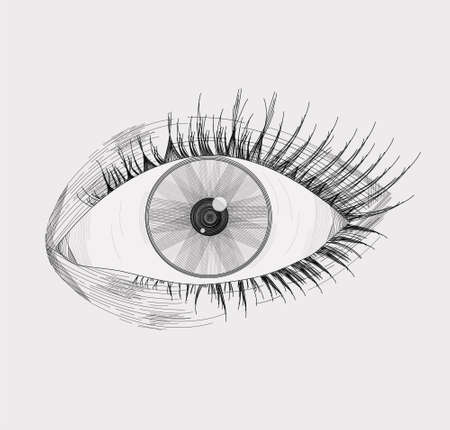 Vector illustration of a realistic left eye, with lashes, made and shaded based on lines, isolated on a light gray background Vetores