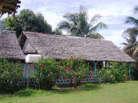 est: La fameuse trano falafa ou maison en falafa de Madagascar,photos prise sur la partie Est de la Grande �le