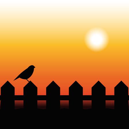 arbol pájaros: Silueta del pájaro en una cerca en la puesta del sol Vectores