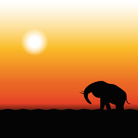 early in the evening: Africa Sunset  Silhouette of Elephant Standing in the Sunset