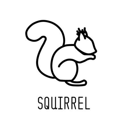 Squirrel line icon. Vector illustration.
