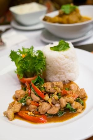 santa cena: Agitar pollo frito con albahaca santa y arroz al vapor, comida tailandesa picante