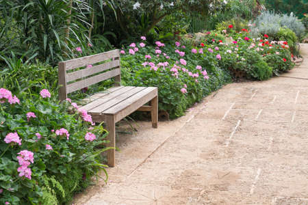 Wooden bench in the garden waiting for someone photo