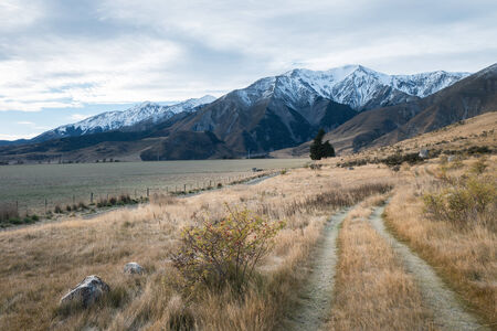 walking path: Walking Path in Castle Hill Reservation area in cloudy day, New Zealand Stock Photo