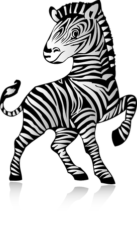 Zebra Illustration