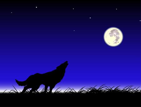 lupo mannaro: Wolf e la luna Vettoriali
