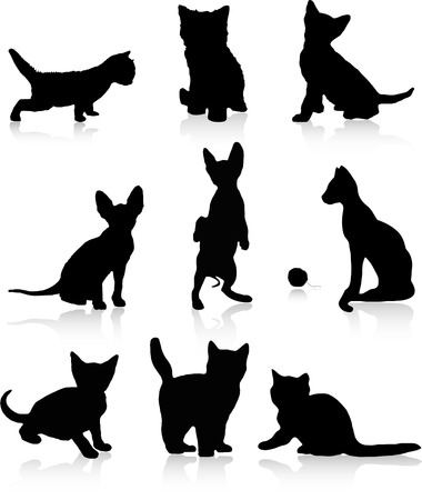 Kittens and cats Vector