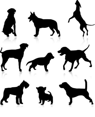 Nine dog illustration