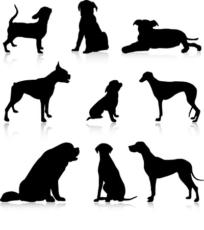 Nine dog&puppies illustration Vector