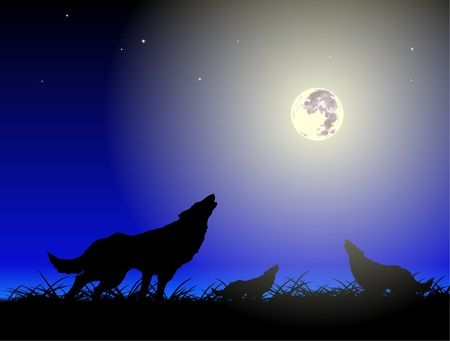 haunting: Vector wolfs and moon