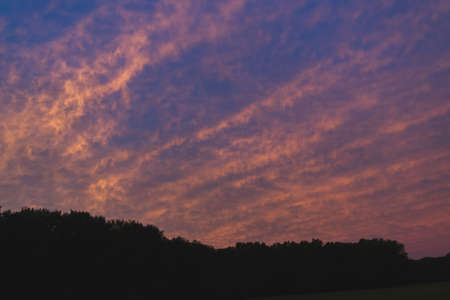 sunset over the treeline. Stock Photo