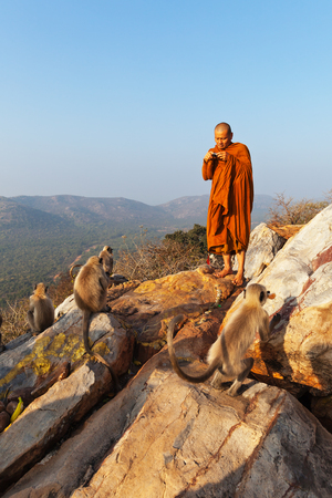 The Buddhist monk - the pilgrim, in traditional clothes, photographs family of monkeys - langur, on the mountain of Gridhkut Vulture, in Rajgir, India, on February 1, 2014