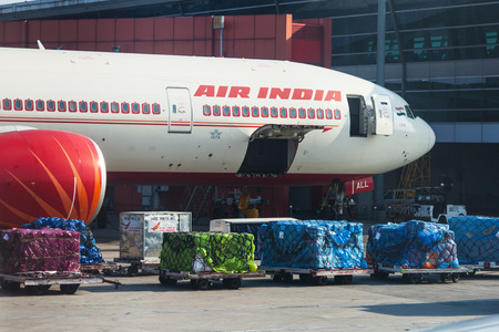 The plane of Air India, stands on loading at the airport of Delhi. In the foreground the containers prepared for loading in special grids. India, Airport of Indira Gandhi, New Delhi, on March 11, 2017