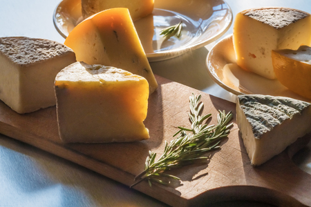 A set of various farmer cheeses, with rosemary branches, lies on plates and a chopping board, in beams of the evening sun.