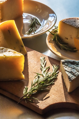 A set of various farmer cheeses, with rosemary branches, lies on plates and a chopping board, in beams of the sun.