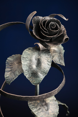 The broze rose with a tape made of metal, on dark-blue background.