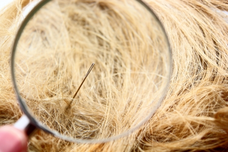 hard to find: Find a Needle in the haystack