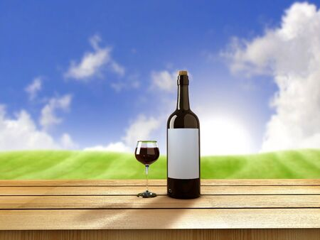 wine growing: Bottle of wine and glass on sunny day Stock Photo