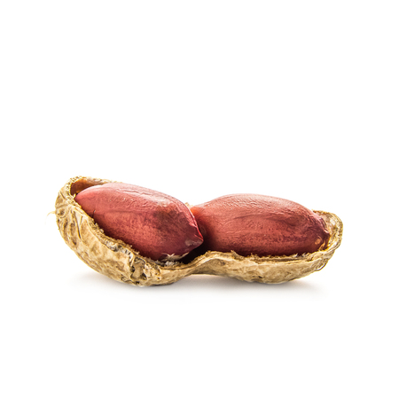 ground nuts: Peanuts in shell on white background Stock Photo