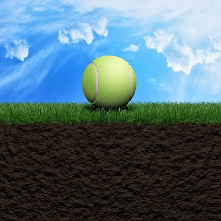 Tenis ball on grass background 3d illustration