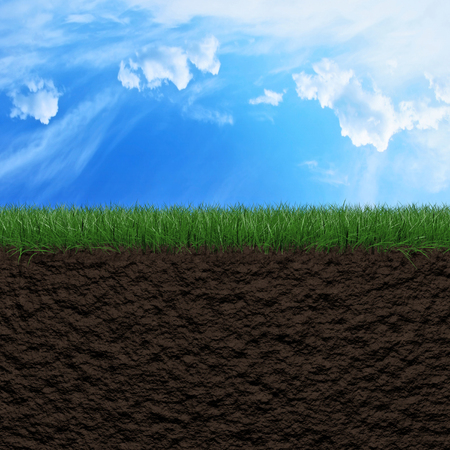 Fresh green grass, soil and sky background 3d illustration Stock Photo