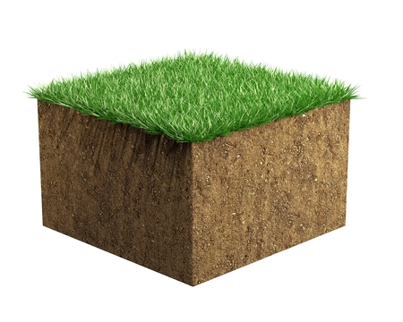 Soil and grass sample isolated 3d render