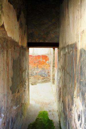 historian: Ancient Art-Herculaneum IX Italy Stock Photo